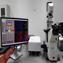 激光扫描共聚焦显微镜